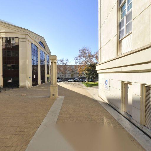 Crit Interim Tertiaire - Agence d'intérim - Montpellier