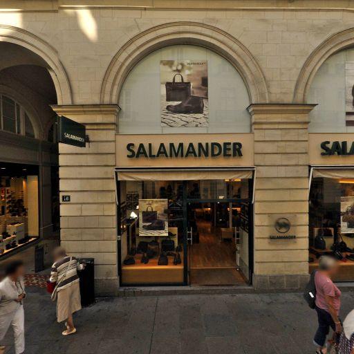 Salamander - Chaussures - Nantes