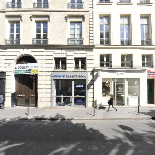IgnitionOne SA - Éditeur de logiciels et société de services informatique - Paris
