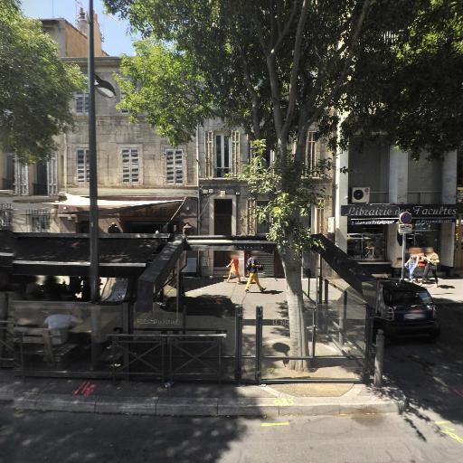 Il Piccolo - Restaurant - Marseille