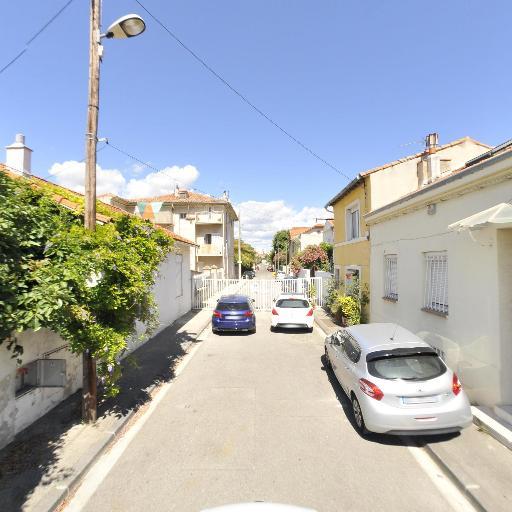 Dice Pro Palmes - Entreprise d'élagage et abattage - Marseille