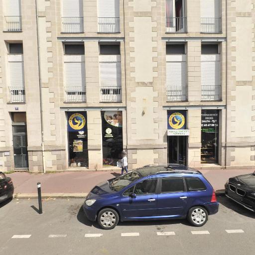 Supexam Nantes - Enseignement supérieur privé - Nantes